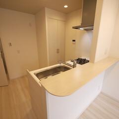 キッチン/対面キッチン/洗濯機置き場 対面キッチンに。キッチンの後ろには扉付き…