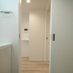 洗面室 リビングから直接入れる家事動線の良い洗面…