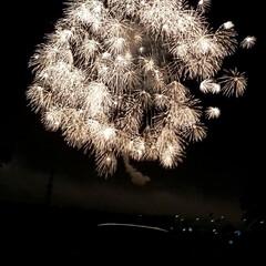 花火 9月10日 片貝花火、世界一の四尺玉『昇…