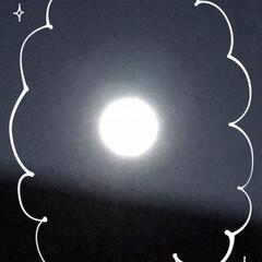 満月 今年初めての満月🌕 ウルフムーンって言う…
