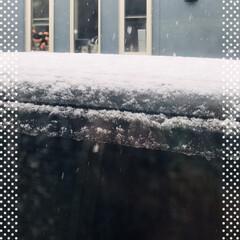 雪☃️/もうすぐ4月 もうすぐ4月なのに  雪☃️❄️です ベ…(2枚目)