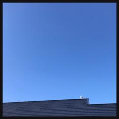 青空 何日ぶりだろう ひっさしぶりの青空‼️ …
