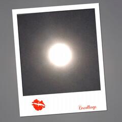 満月🌕 今日は令和元年 最後の満月だそうですよ!