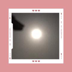満月🌕 四月の満月🌕 ピンクムーン(1枚目)
