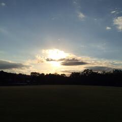 秋/風景 以前 娘と公園で遊んだ帰り、何気に空を見…