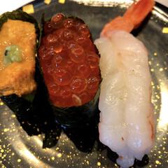 宝石のようなお寿司/キラキラ/サリーちゃんは今日も飲む/魚/海鮮/甘エビ/... キラキラお寿司✨🍣  今週も明日を乗り越…