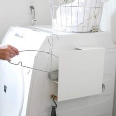 tosca/ランドリー収納/ランドリー/サニタリー/洗濯機周り/ハンガーラック/... ハンガーを隠してスッキリ収納  磁石で洗…