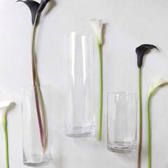 季節を楽しむ/季節の花/フラワーベース/花器/枝物/お花のある生活/... 知識がなくても素敵に飾れるフラワーベース…