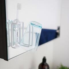 壁面収納/モノトーン/整理整頓/サニタリー/浴室・風呂 スリムでスタイリッシュなハブラシホルダー…