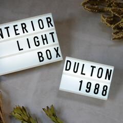 lightbox/ライトボックス/ダルトン/DULTON/デザイン/お気に入り/... *ダルトン L.E.Dライトボックス* …(1枚目)