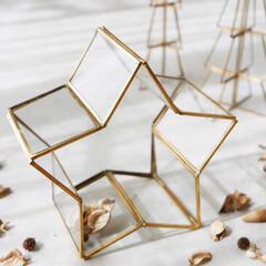 アンティーク/ガラスの器/小物入れ/飾り/スター/星型/... 立体的なスターモチーフが空間を彩るフレー…