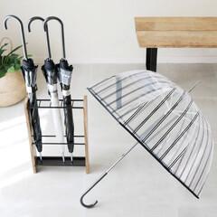 mollymarais/UMBRELLA/梅雨対策/雨の日コーデ/ビニール傘/傘/... 大人可愛いビニール傘  目を引くデザイン…