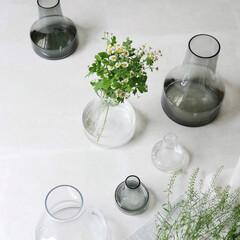 ファゴット/ガーデニング雑貨/ガーデニング/お花のある生活/花瓶/フラワーベース/... シンプルだけど個性的、美しい曲線が魅力の…