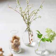 テーブルコーディネート/お花のある暮らし/花のある暮らし/花のある生活/一輪挿し/フラワーベース/... 小さなフラワーベースで季節の彩りを  1…