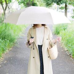 日傘/晴雨兼用傘/晴雨兼用/折りたたみ傘/傘/レイングッズ/... 傘本来の形を実現!頼りになる折り畳み傘 …