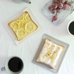 トーストプレート/食器/テーブルウェア/食パン/朝はパン/プレート/... 時間が経ってもサックサク!トーストを美味…