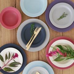 食卓/器/テーブルコーディネート/食器/カラフル/雑貨/... 料理のための美しい器  すべすべな質感と…(1枚目)