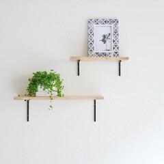 シェルフ/棚/棚DIY/DIY/空間演出/ディスプレイ/... 自分で作る、お洒落空間  棚を置くスペー…