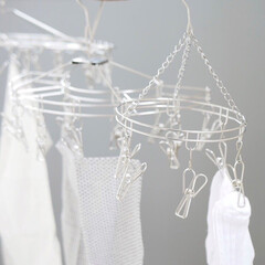 ステンレス/洗濯物干し/ピンチハンガー/部屋干し/お洗濯/雑貨/... 長く愛用できるピンチハンガー  スタイリ…