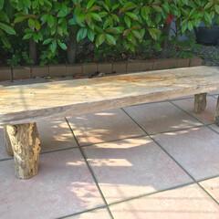 木ダボ/花置き台/流木/DIY/インテリア 海で拾ってきた流木で植物を置く台を作って…