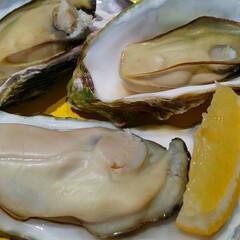 おうちごはん/暮らし 友達から 殻付き牡蠣を貰ったから 早速🍽…