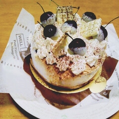 誕生日ケーキ/ティラミス進化系?/手作りケーキ 1ヶ月遅れの誕生日にと my cousi…