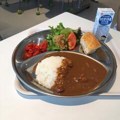 ごはん 横須賀に来たら、軍艦カレーとハンバーガー(3枚目)