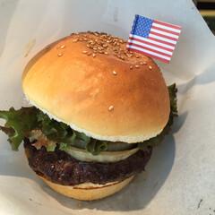 ごはん 横須賀に来たら、軍艦カレーとハンバーガー(2枚目)