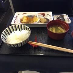 ごはん 機内でご飯パート2(1枚目)
