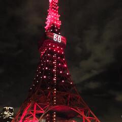 東京タワー/ライトアップ/バルコニー/おうち/2018 今日は60周年だそう♡