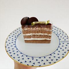 おやつ/生チョコケーキ/生チョコ/小動物/フェレット/チョコ/... 今日は 生チョコケーキをいただいたので …(3枚目)