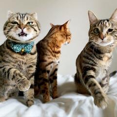 兄弟/アメリカンショートヘア/アメショ/保護猫/ベンガルキャット/ベンガル猫/... 子供達の変顔大会!! いがいと('👅')…(5枚目)
