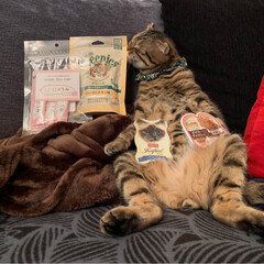 グリニーズ 猫用 ローストチキン味 156g マース オーラルケア 歯磨き キャットフード ペットフード キャット(おやつ)を使ったクチコミ「PEPPY.さんから スタッフ厳選うまう…」(4枚目)