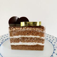 おやつ/生チョコケーキ/生チョコ/小動物/フェレット/チョコ/... 今日は 生チョコケーキをいただいたので …(4枚目)