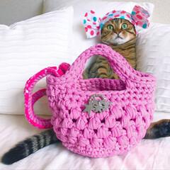丸洗い/フェレット/編み物/ショルダーバッグ/ハンドバッグ/うさぎ/... ズパゲッティの糸を使い、春らしいカラーの…(2枚目)