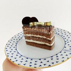 おやつ/生チョコケーキ/生チョコ/小動物/フェレット/チョコ/... 今日は 生チョコケーキをいただいたので …(5枚目)