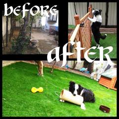 リッチェル 木製犬舎 830 | リッチェル(交換用パーツ)を使ったクチコミ「犬を飼い始めたのでほったらかしだった庭を…」(1枚目)