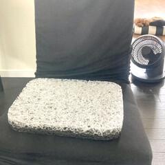 プリマレックス アウトドアクッション 洗える 高反発 通気性 速乾 座布団 オフィス 行楽 | PRIMAREX(クッション)を使ったクチコミ「プリマレックス アウトドアクッション 当…」(5枚目)