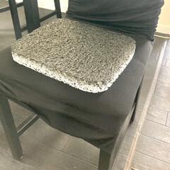 プリマレックス アウトドアクッション 洗える 高反発 通気性 速乾 座布団 オフィス 行楽 | PRIMAREX(クッション)を使ったクチコミ「プリマレックス アウトドアクッション 当…」(4枚目)