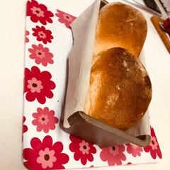 てごねパン/パウンドケーキの型で/朝ごパン/ハンドメイド パウンドケーキの型で山食パンを焼きました…