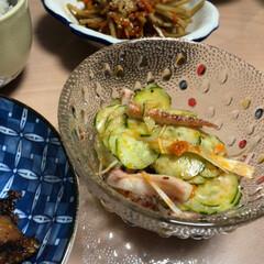 和食の定番/きんぴら/秋/おうちごはん 今日のお昼は好きなものばかりw  きんぴ…