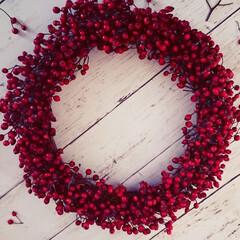 ローズヒップ/クリスマス雑貨/クリスマスリース/秋/100均/ダイソー/...  庭のローズヒップでリース作りました💕 …