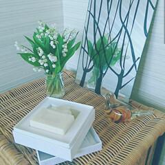 お花/トイレ/住まい/玄関/石鹸/鈴蘭/... 季節のお花をちょっとだけ飾るのが 私スタ…