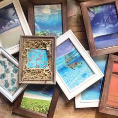 藻/暮らしを楽しむ/住まい/インテリア/フレームリメイク/フレーム/... ダイソーのスタンド式フレームを、大好きな…