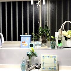 アフタヌーンティー/ティファール/観葉植物/ブルー/グリーン/ハーバリウム/... キッチンに置く物や使う物をブルーやグリー…