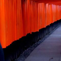 旅行 今日帰ります 京都のお寺巡りと祇園散策 …(2枚目)