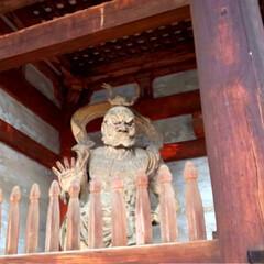 旅行 今日帰ります 京都のお寺巡りと祇園散策 …(3枚目)