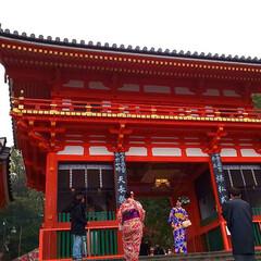 旅行 京都旅行3日目 金閣寺→竜安寺→仁和寺→…