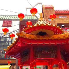 旅行 今日帰ります 京都のお寺巡りと祇園散策 …(7枚目)