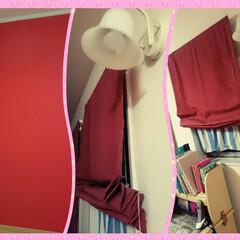 子供部屋/赤/アクセントクロス 娘の部屋は、赤がメインカラー。 トイレ同…